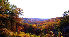 A Beautiful View of Brown County State Park